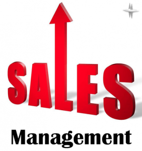 Sales Management System Project in C++